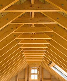 lumber_pic_01_lrg.crop